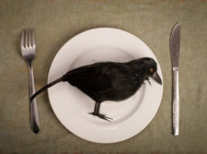 Mmmm ... delicious crow.