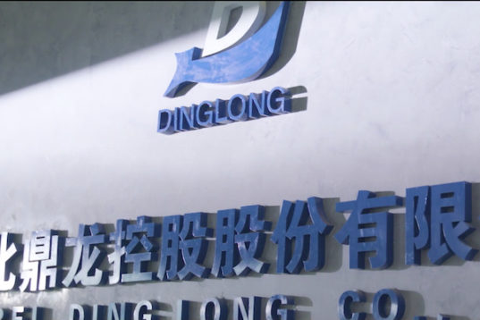 Hubei Dinglong Closes Books on Tough FY 2019 and Q1 2020